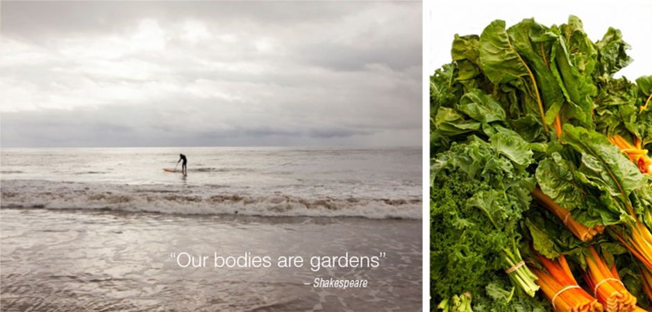 Our bodies are gardens